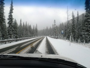 The snow on the North Cascades Highway on the way back.