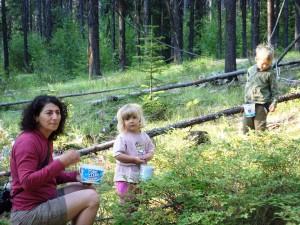 Bina, Nala and Ovid picking huckleberries
