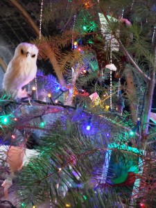 One of many owl ornaments looks over the Christmas Tree
