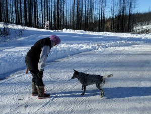 Cheryl playing with our dog, Gretchen. Note the burnt trees in back and some cut down on the right.