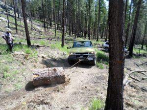 Jeremiah tows a log